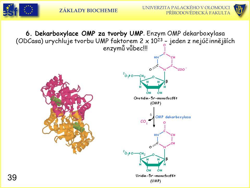 6. Dekarboxylace OMP za tvorby UMP