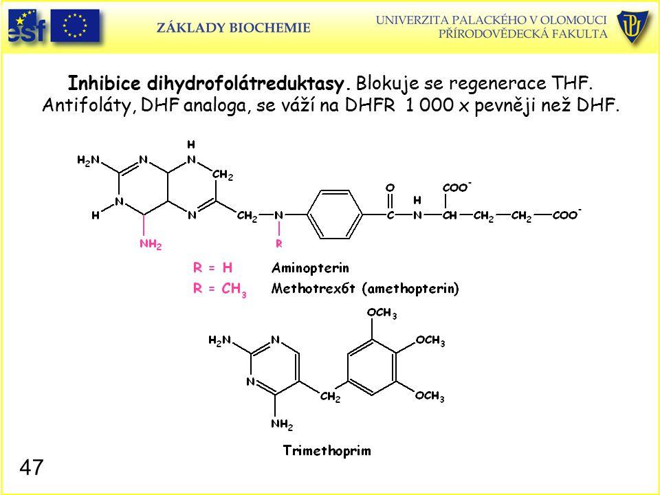Inhibice dihydrofolátreduktasy. Blokuje se regenerace THF