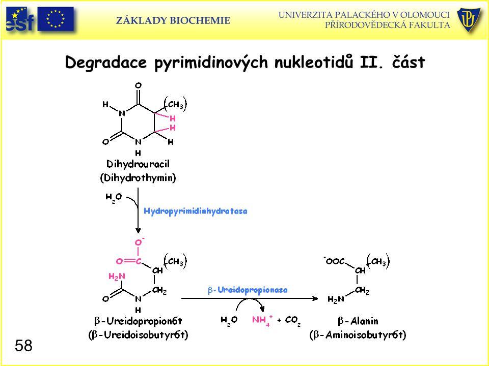 Degradace pyrimidinových nukleotidů II. část