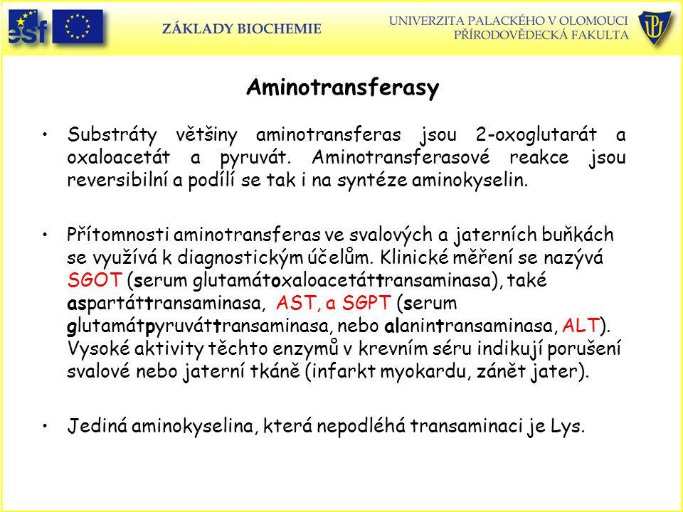Aminotransferasy