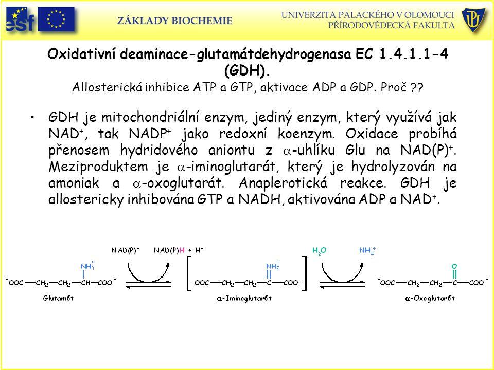 Oxidativní deaminace-glutamátdehydrogenasa EC 1. 4. 1. 1-4 (GDH)