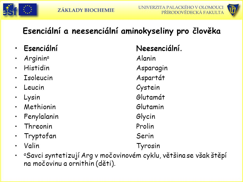 Esenciální a neesenciální aminokyseliny pro člověka