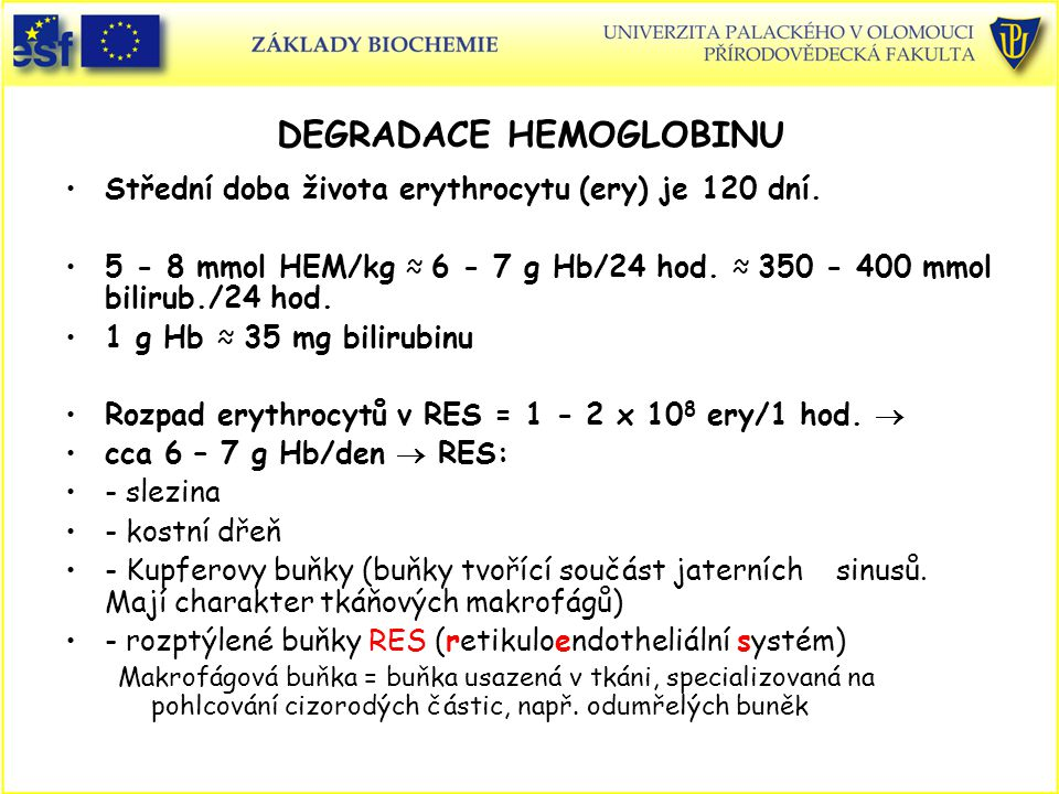 DEGRADACE HEMOGLOBINU
