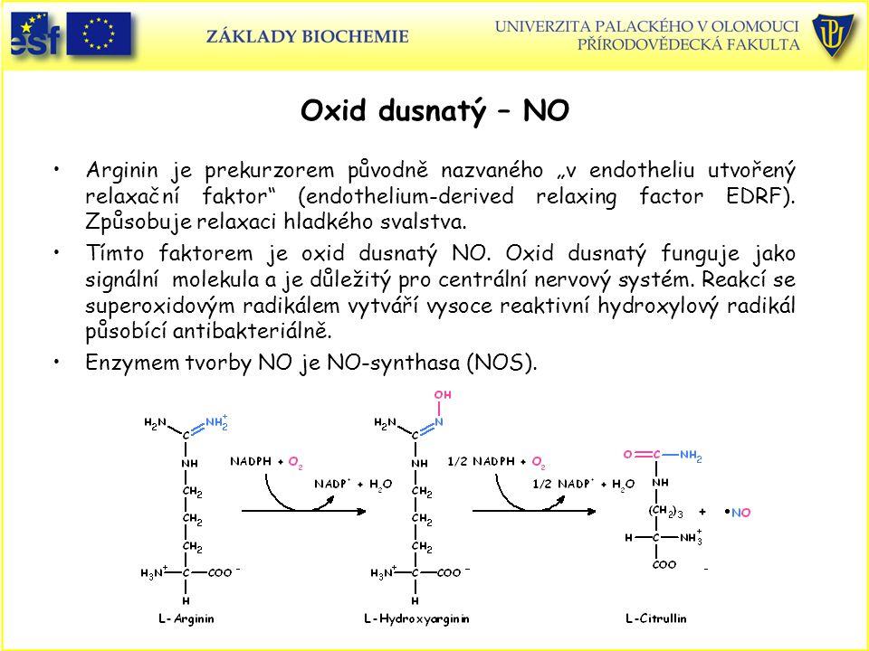 Oxid dusnatý – NO