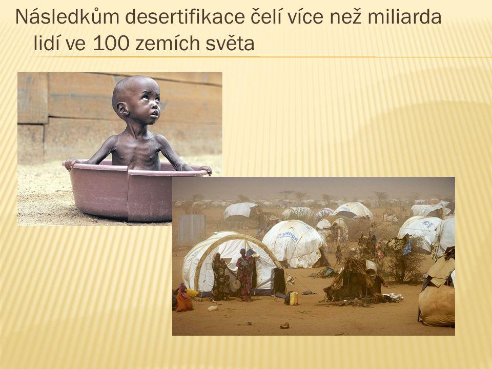 Následkům desertifikace čelí více než miliarda lidí ve 100 zemích světa