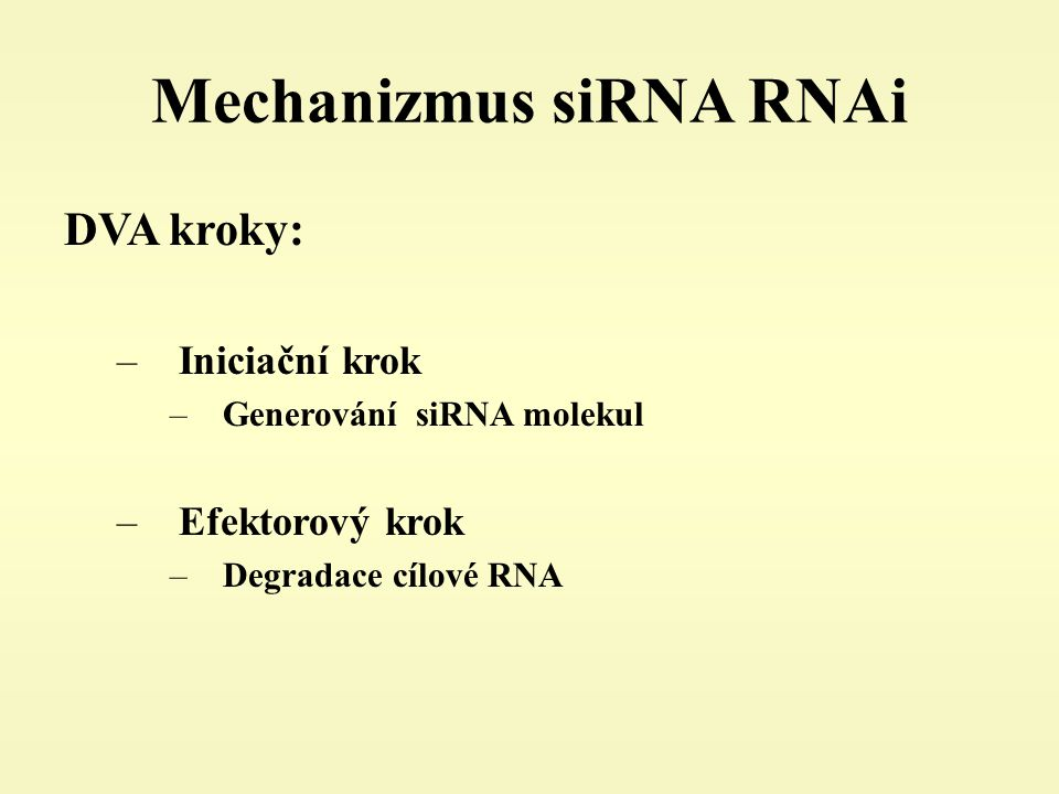 Mechanizmus siRNA RNAi