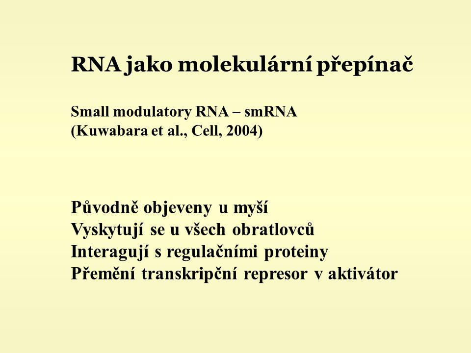 RNA jako molekulární přepínač