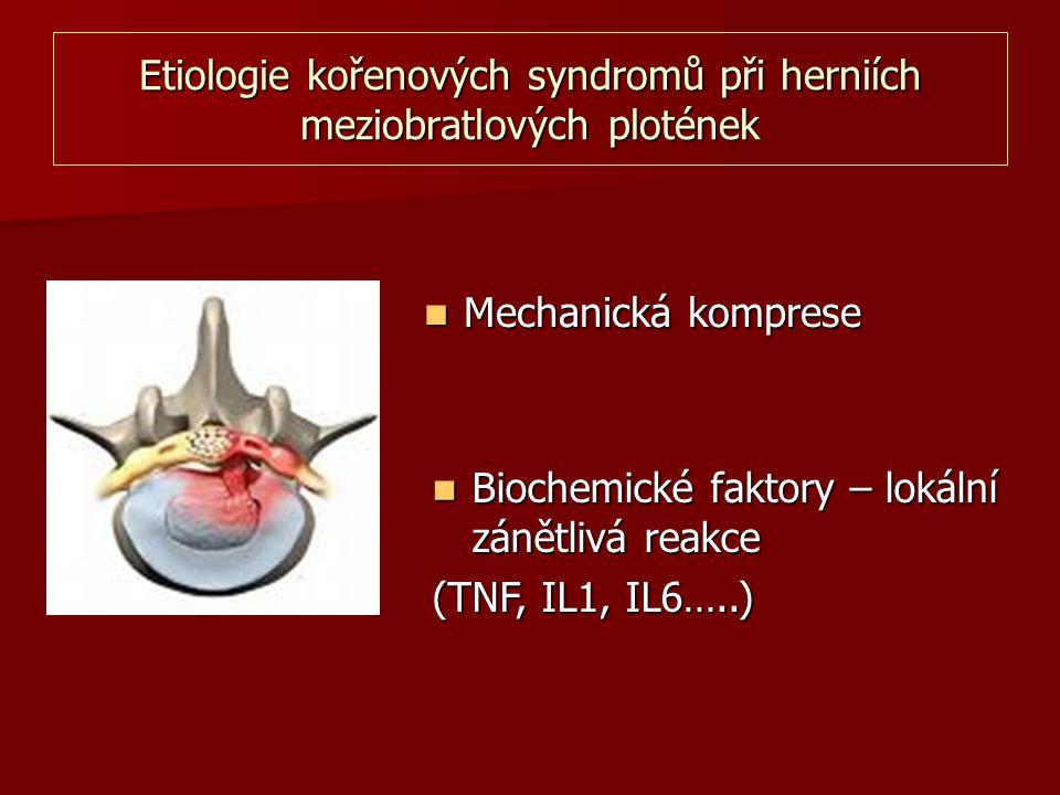 Etiologie kořenových syndromů při herniích meziobratlových plotének