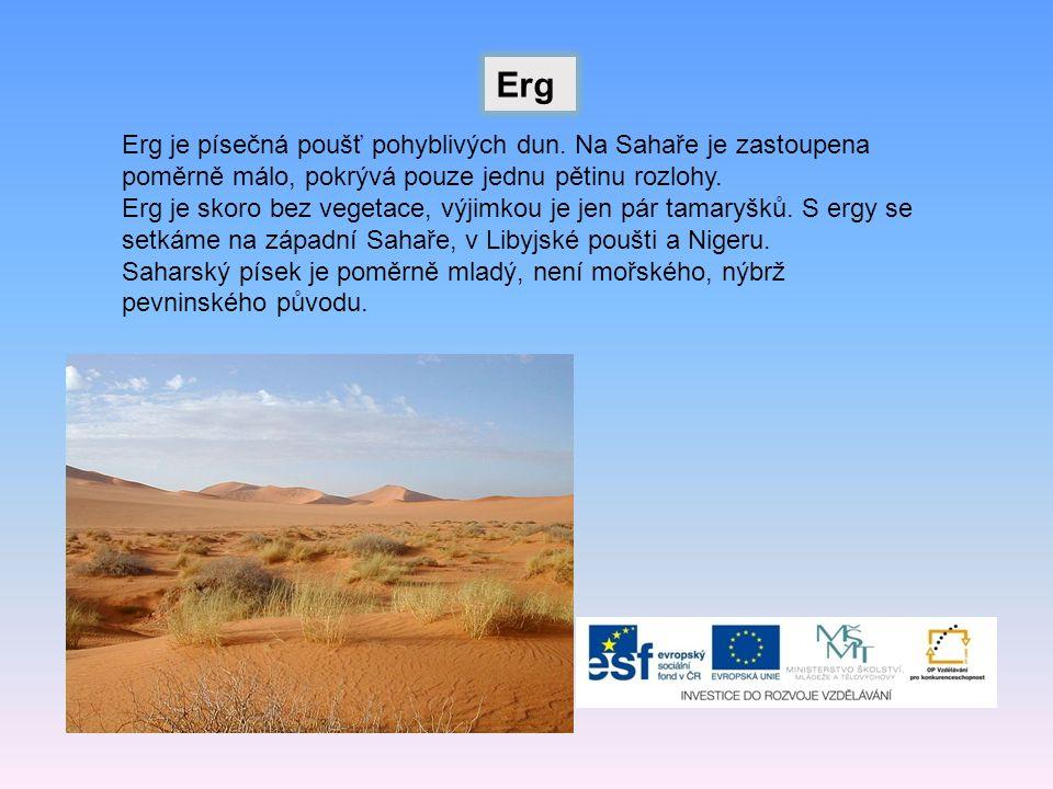 Erg Erg je písečná poušť pohyblivých dun. Na Sahaře je zastoupena poměrně málo, pokrývá pouze jednu pětinu rozlohy.
