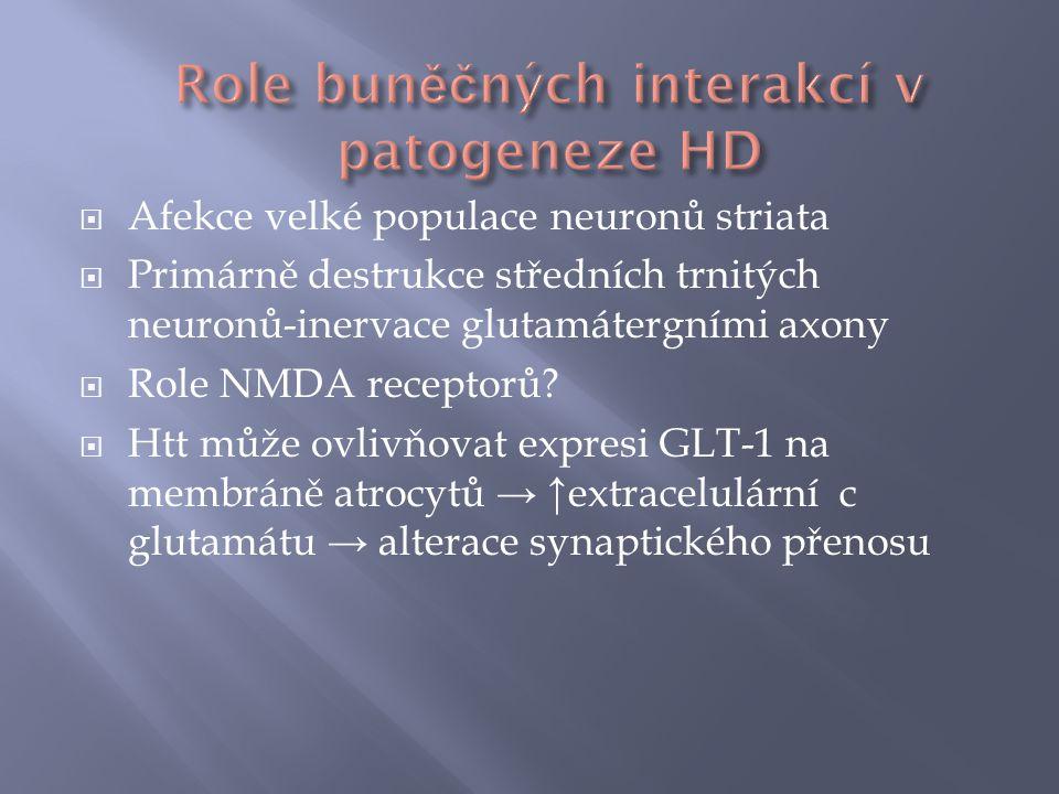 Role buněčných interakcí v patogeneze HD