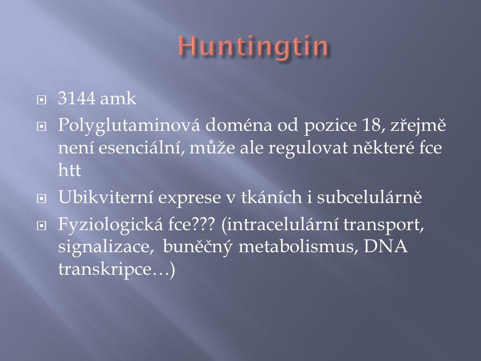 Huntingtin 3144 amk. Polyglutaminová doména od pozice 18, zřejmě není esenciální, může ale regulovat některé fce htt.