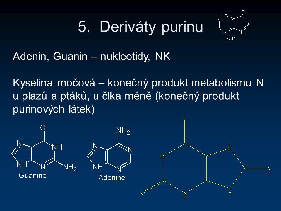 5. Deriváty purinu Adenin, Guanin – nukleotidy, NK