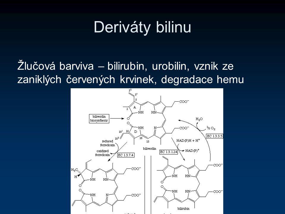 Deriváty bilinu Žlučová barviva – bilirubin, urobilin, vznik ze zaniklých červených krvinek, degradace hemu.