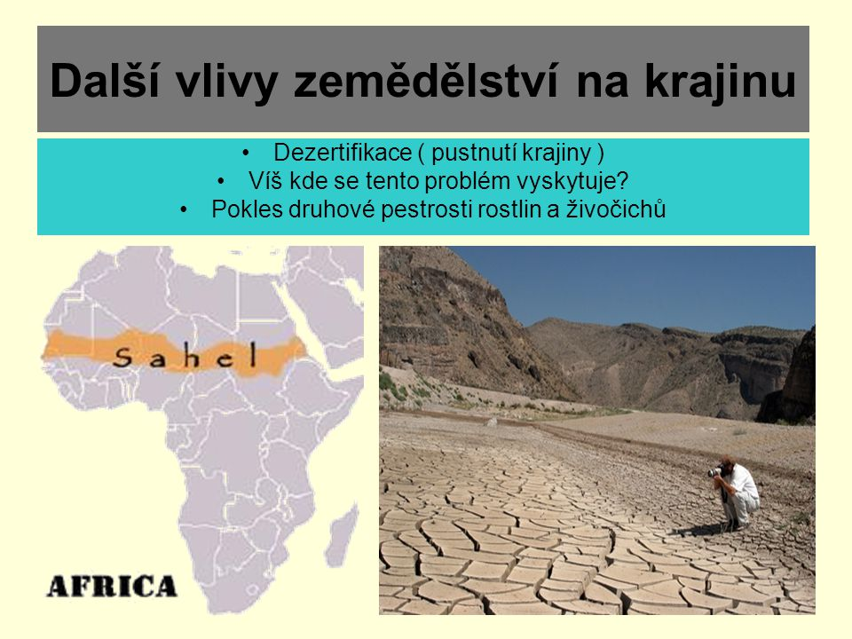 Další vlivy zemědělství na krajinu