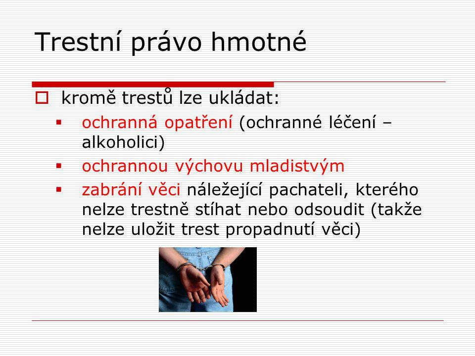 Trestní právo hmotné kromě trestů lze ukládat: