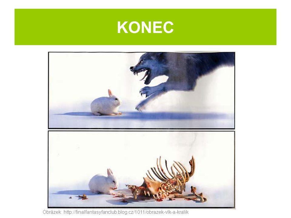 Obrázek: http://finalfantasyfanclub.blog.cz/1011/obrazek-vlk-a-kralik