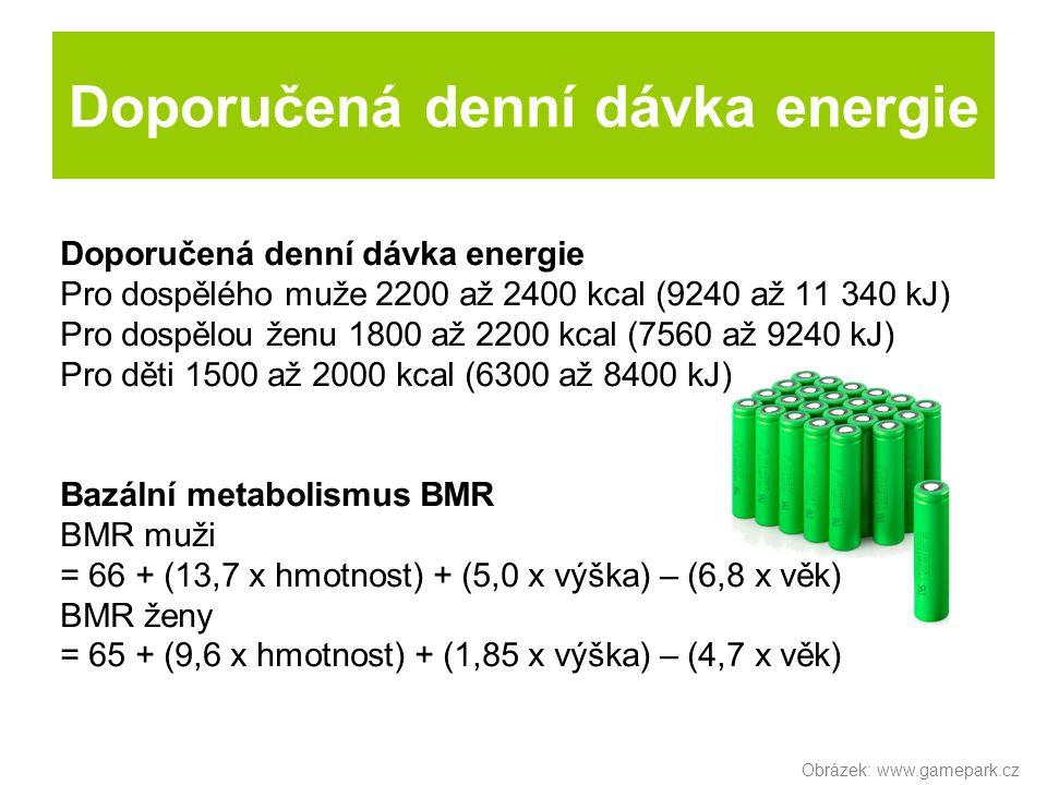 Doporučená denní dávka energie
