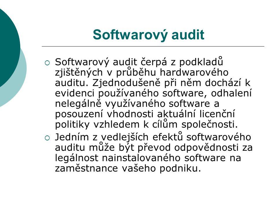 Softwarový audit