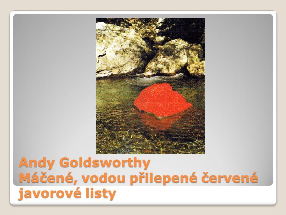 Andy Goldsworthy Máčené, vodou přilepené červené javorové listy
