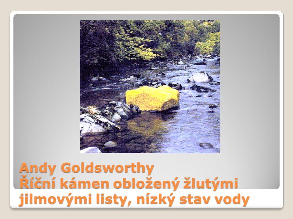 Andy Goldsworthy Říční kámen obložený žlutými jilmovými listy, nízký stav vody