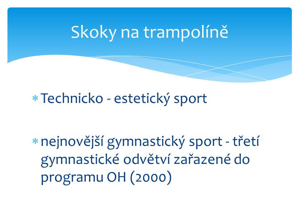 Skoky na trampolíně Technicko - estetický sport