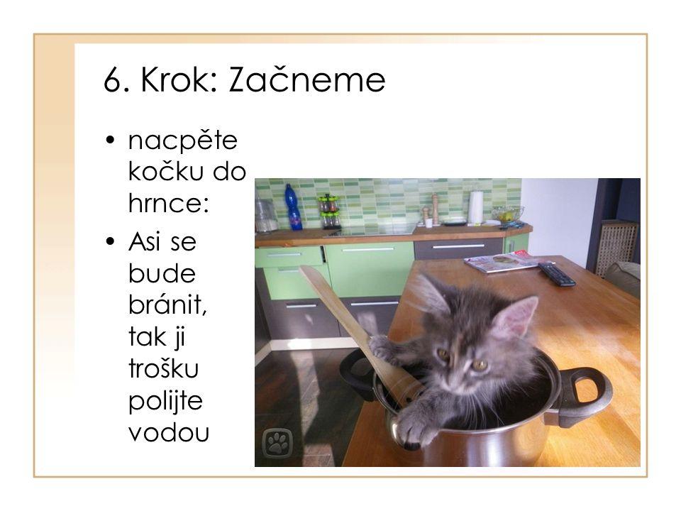 6. Krok: Začneme nacpěte kočku do hrnce: