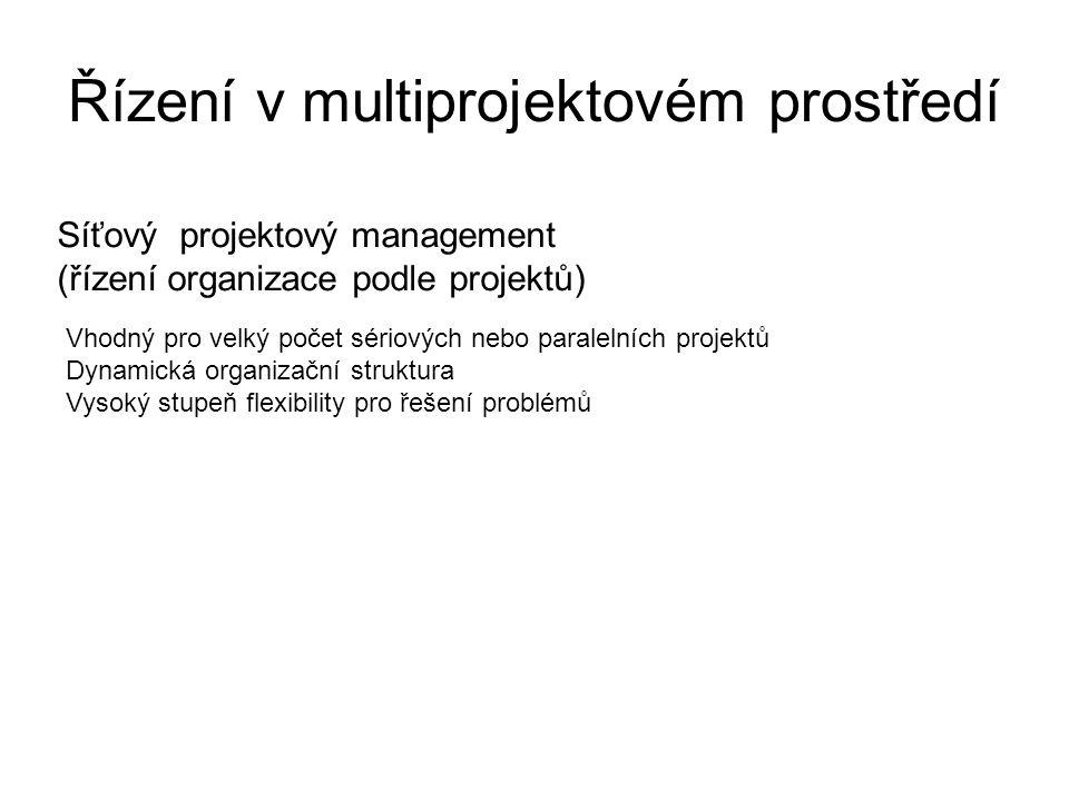 Řízení v multiprojektovém prostředí