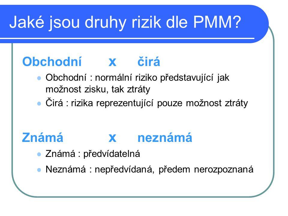 Jaké jsou druhy rizik dle PMM