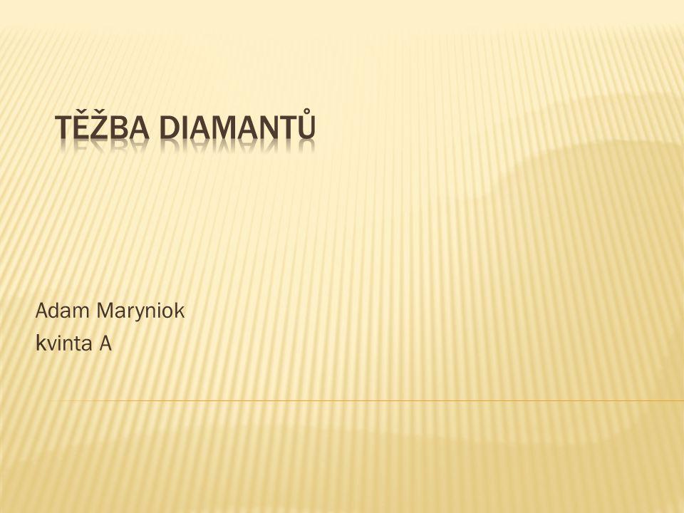 Těžba diamantů Adam Maryniok kvinta A