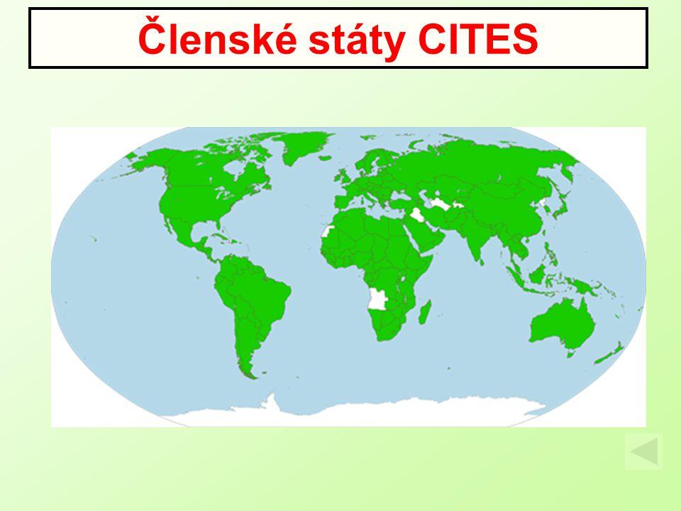 Členské státy CITES