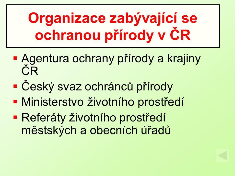 Organizace zabývající se ochranou přírody v ČR