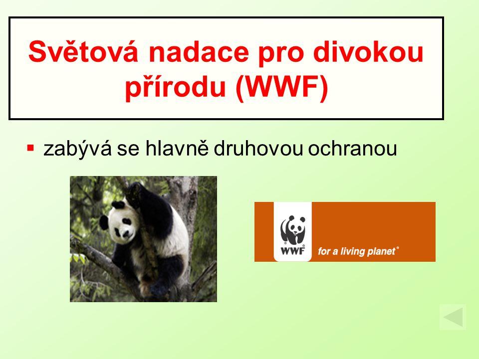 Světová nadace pro divokou přírodu (WWF)