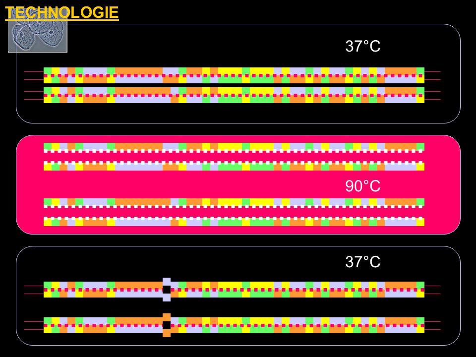 TECHNOLOGIE 37°C 90°C