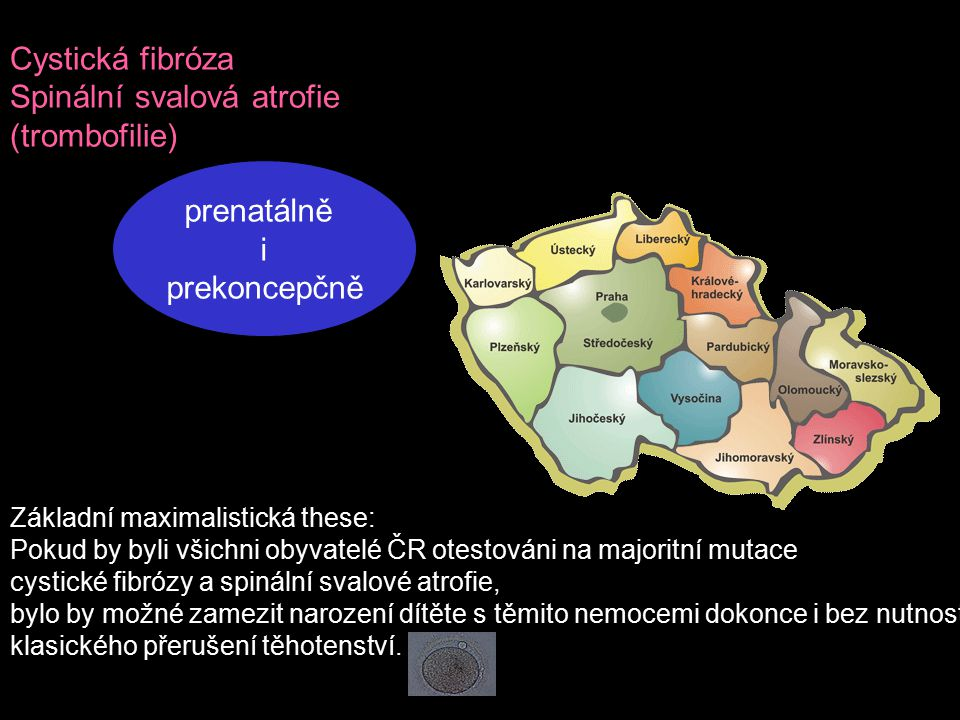 Spinální svalová atrofie (trombofilie)