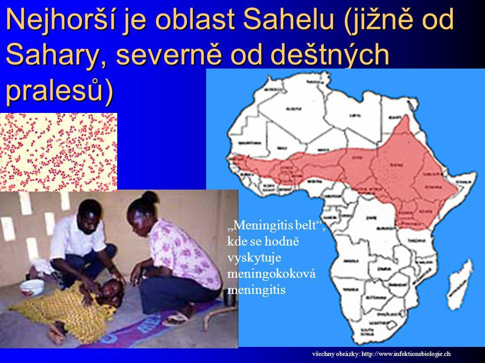 Nejhorší je oblast Sahelu (jižně od Sahary, severně od deštných pralesů)