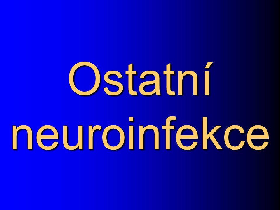 Ostatní neuroinfekce 144