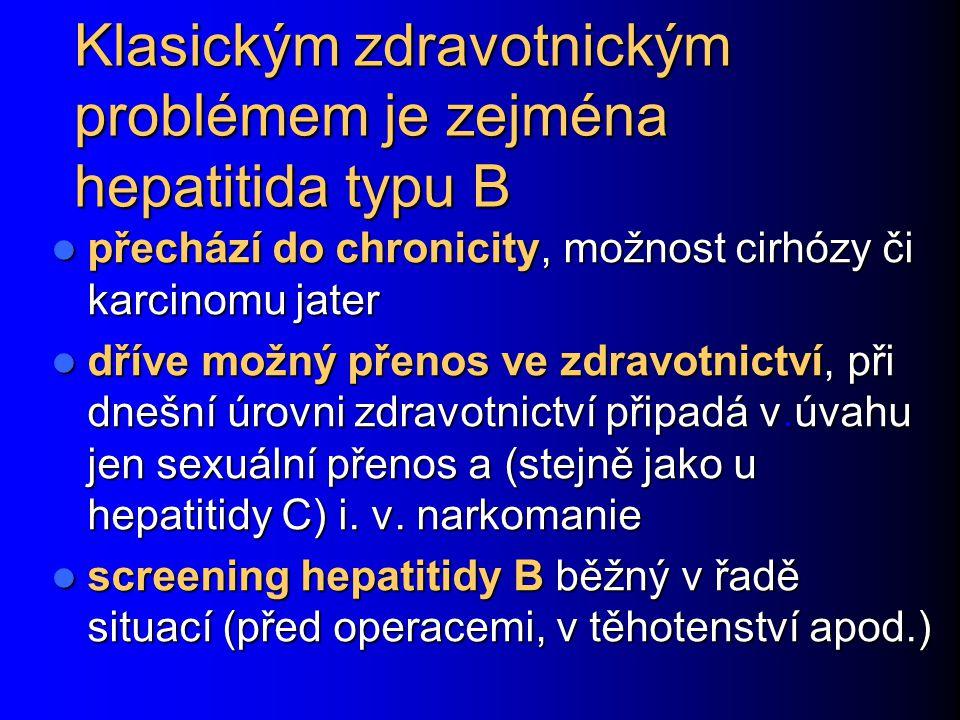 Klasickým zdravotnickým problémem je zejména hepatitida typu B
