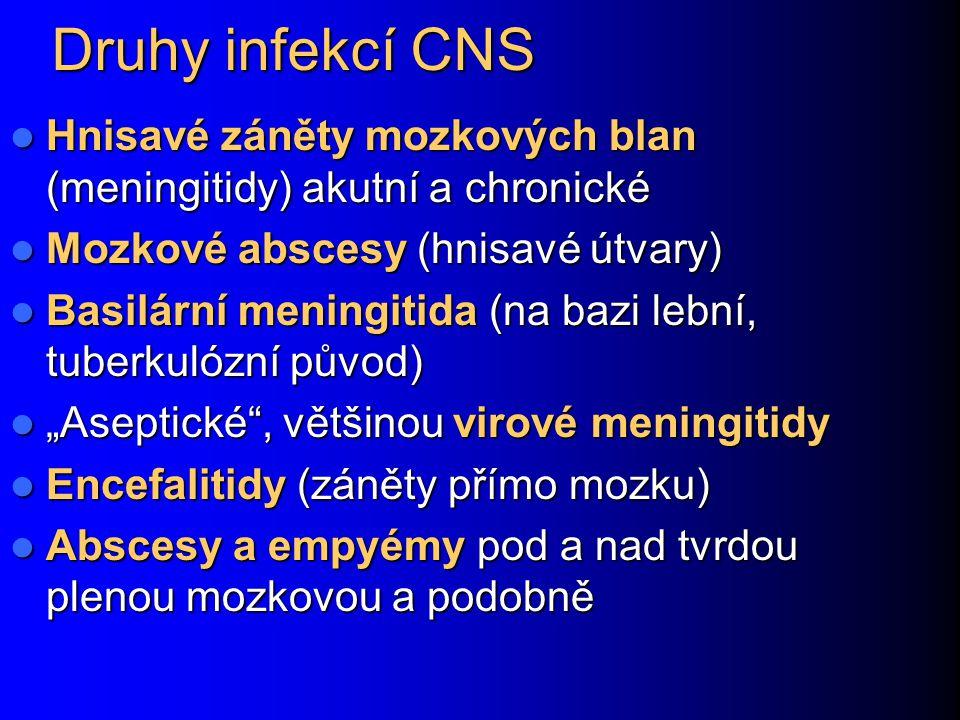 Druhy infekcí CNS Hnisavé záněty mozkových blan (meningitidy) akutní a chronické. Mozkové abscesy (hnisavé útvary)