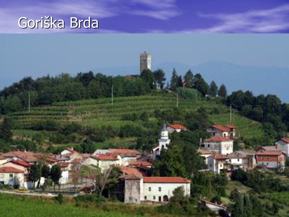 Goriška Brda