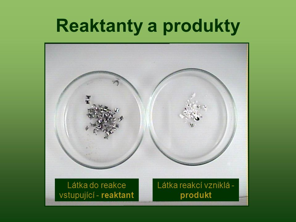 Látka do reakce vstupující - reaktant