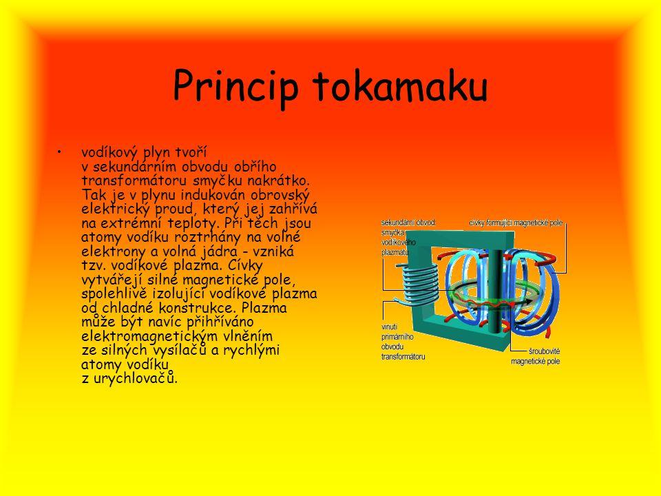 Princip tokamaku