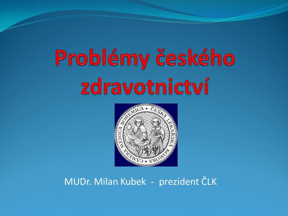 Problémy českého zdravotnictví