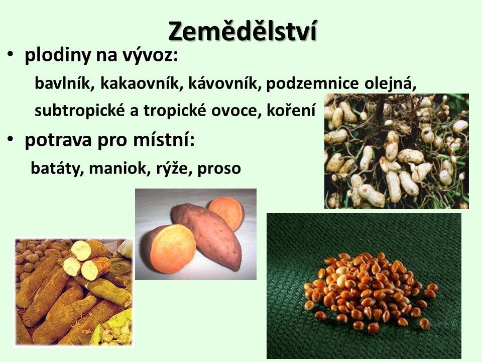 Zemědělství plodiny na vývoz: potrava pro místní: