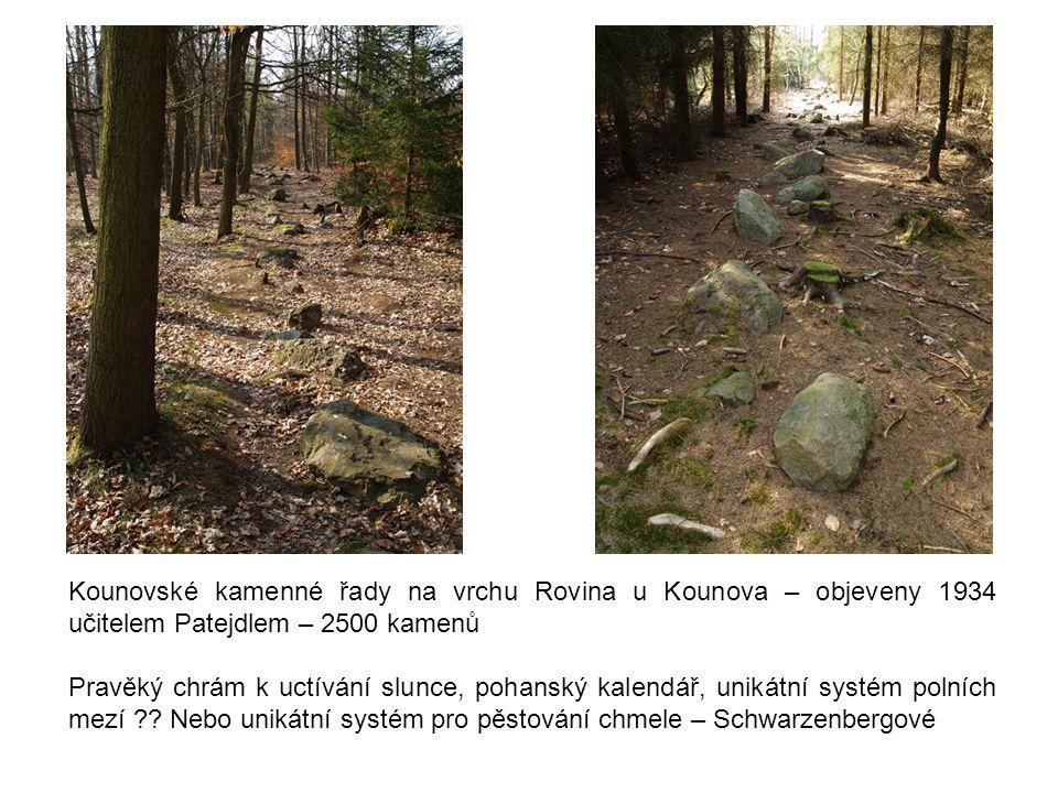 Kounovské kamenné řady na vrchu Rovina u Kounova – objeveny 1934 učitelem Patejdlem – 2500 kamenů
