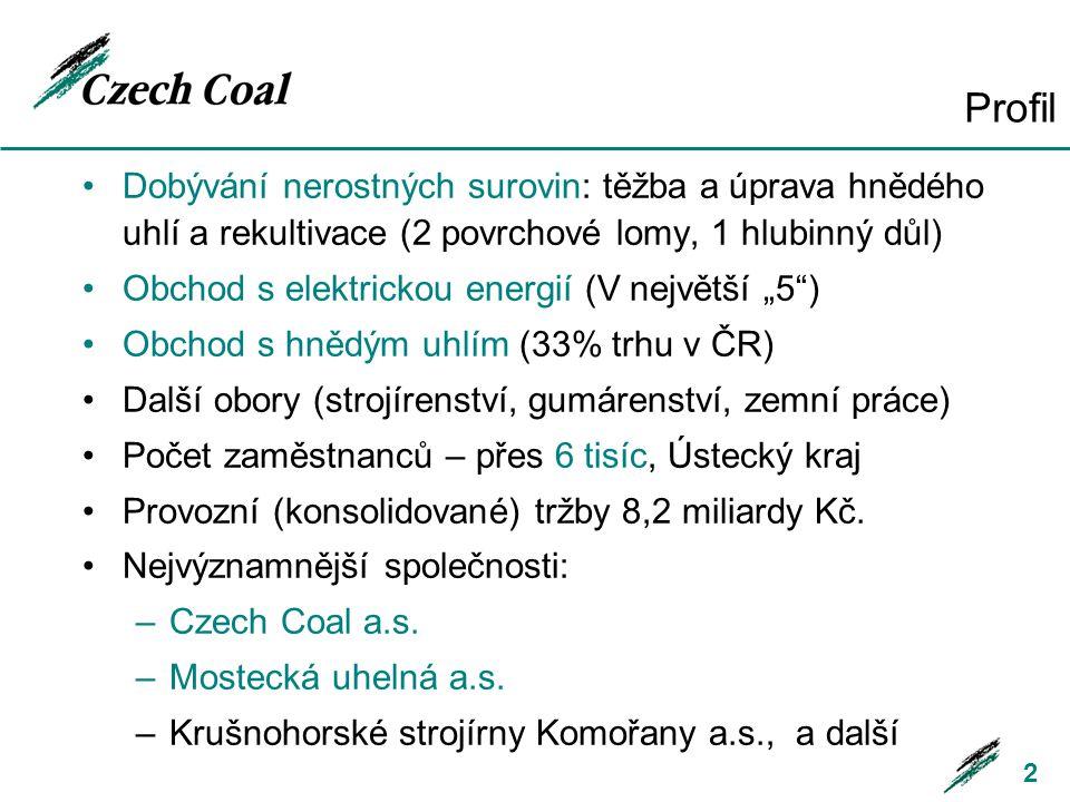 Profil Dobývání nerostných surovin: těžba a úprava hnědého uhlí a rekultivace (2 povrchové lomy, 1 hlubinný důl)