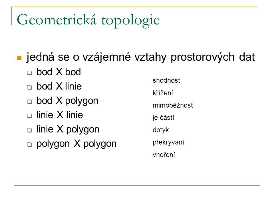 Geometrická topologie