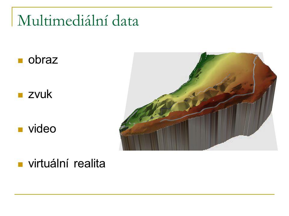 Multimediální data obraz zvuk video virtuální realita