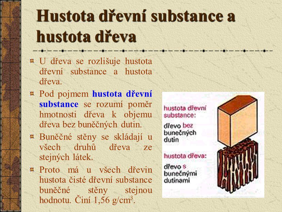Hustota dřevní substance a hustota dřeva