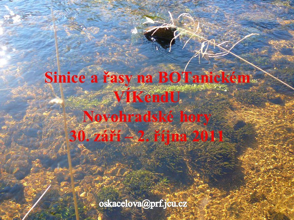 Sinice a řasy na BOTanickém VÍKendU Novohradské hory 30. září – 2