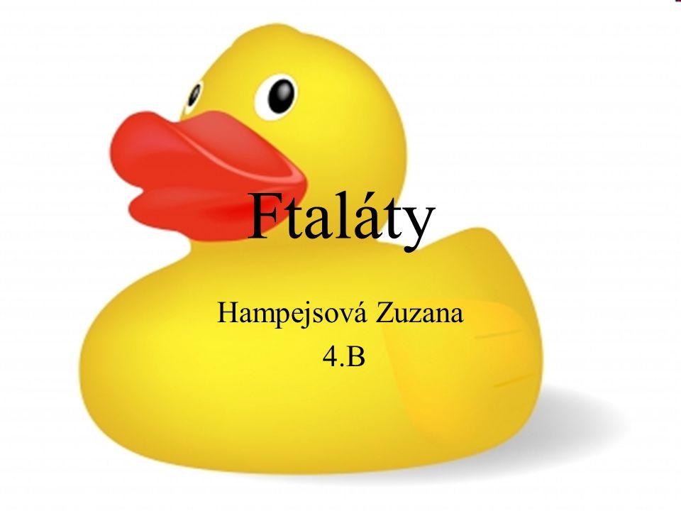 Ftaláty Hampejsová Zuzana 4.B